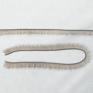 Eyelash Strip - Light Brown