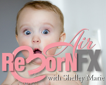 shelley-marie-macp Reborn Dolls